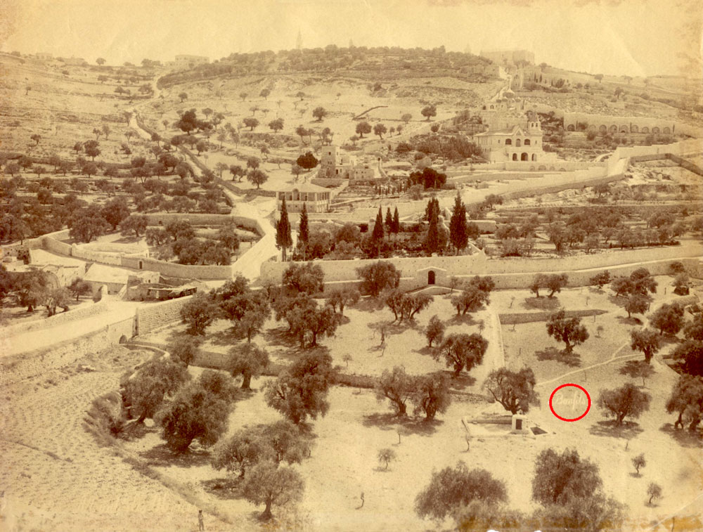 The Garden of Gethsemane, General view by Felix Bonfils ca. 1885 - click to enlarge.